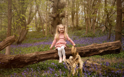 The best country parks in Kent